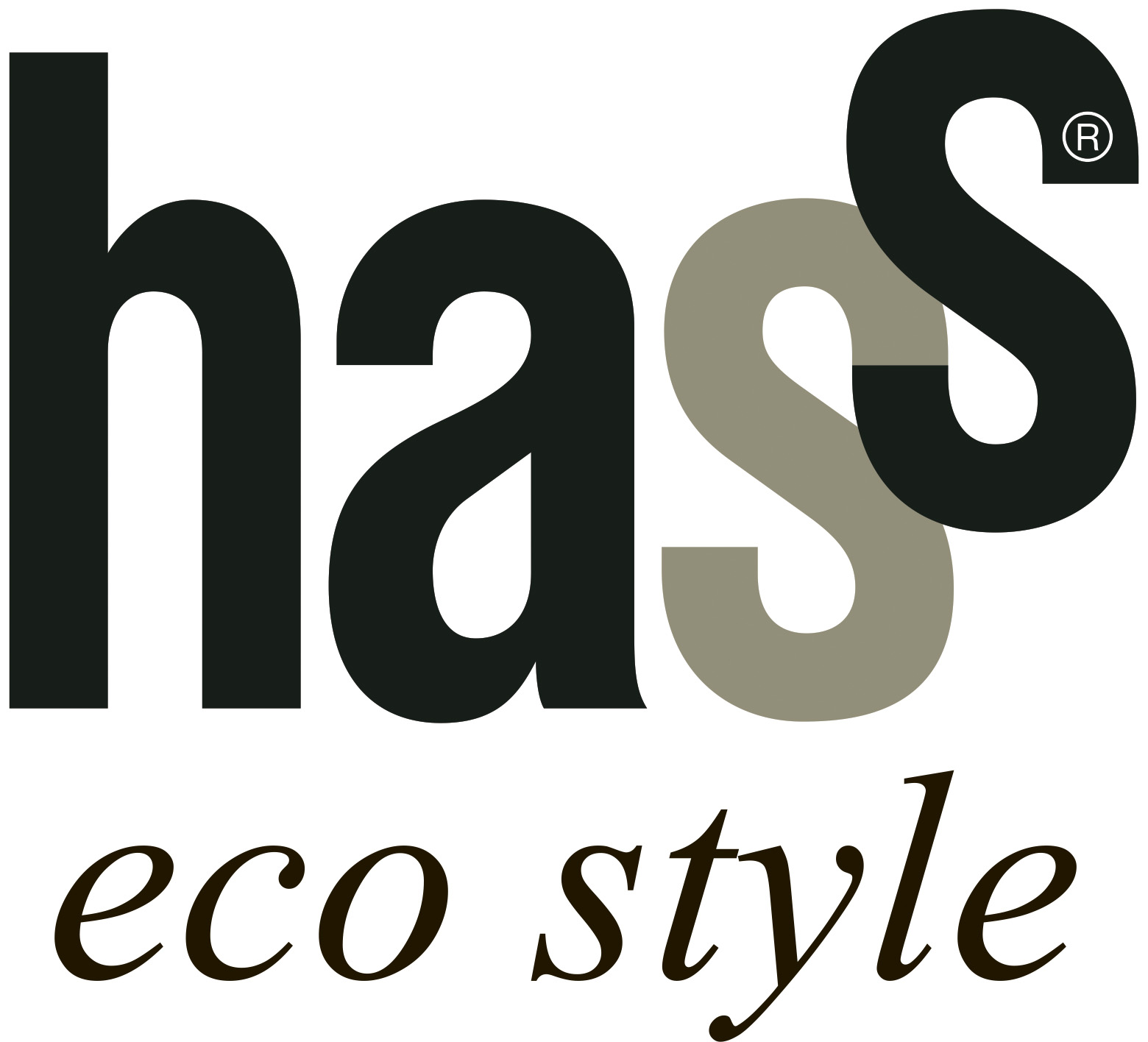 logo HASS Eco Style